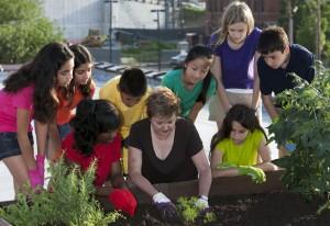 gardening with kids 2
